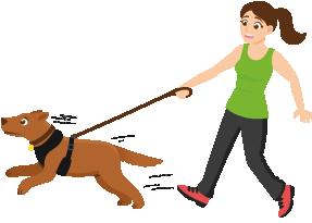 traindee chica con perro de tiro que hacer si tu perro tira de la correa