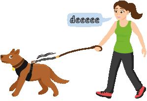 traindee chica con perro después de no haber sido entrenada para tirar de la correa extensor para elasticidad